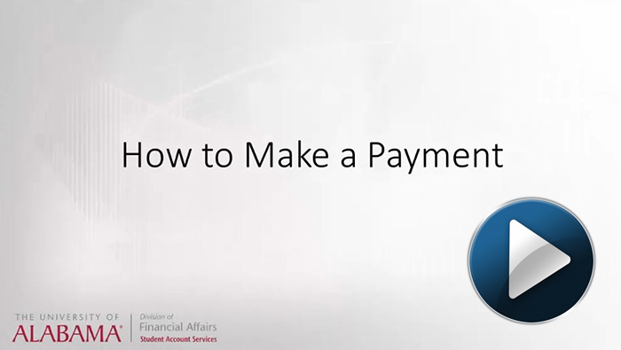 How to make a payment video link